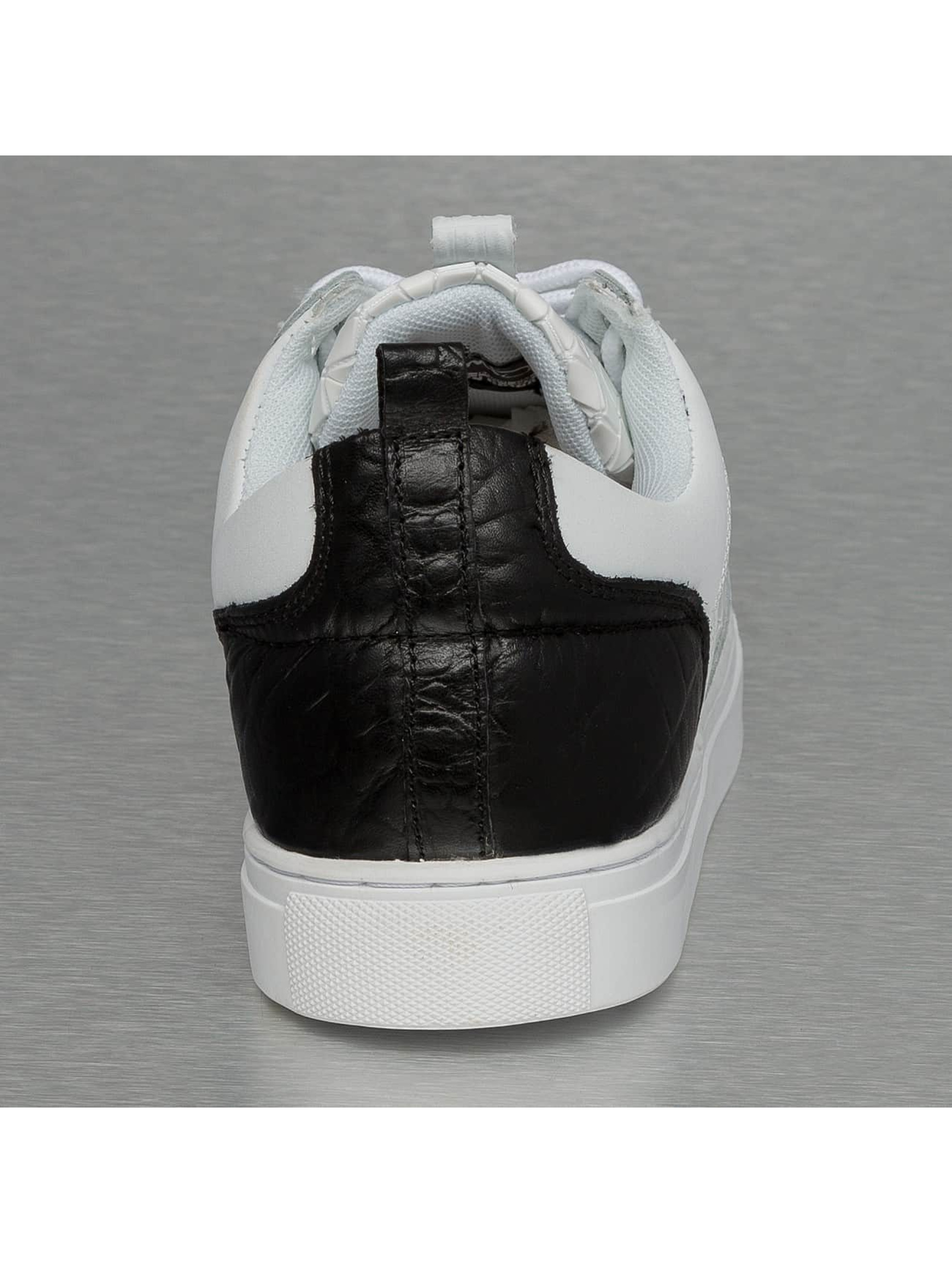 Djinns Baskets Forlow Rubber Croc blanc