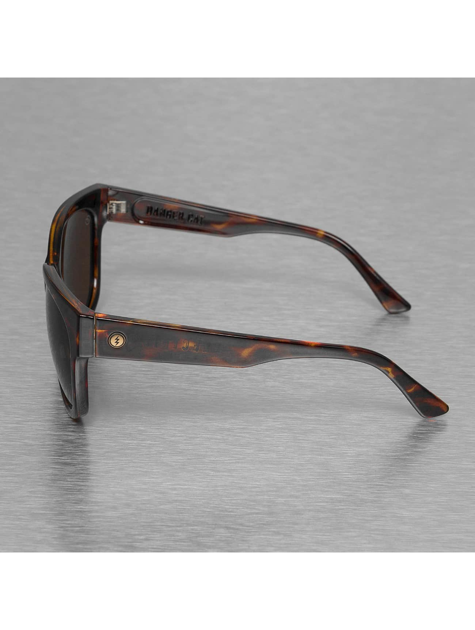 Electric Sunglasses DANGER CAT brown