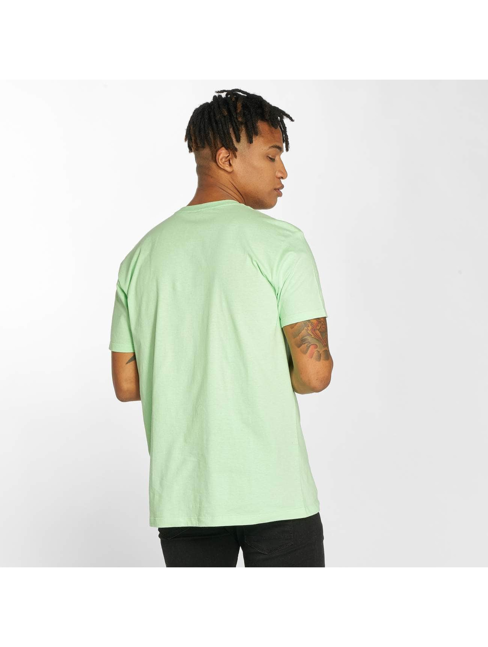 Etnies T-Shirt New Box green