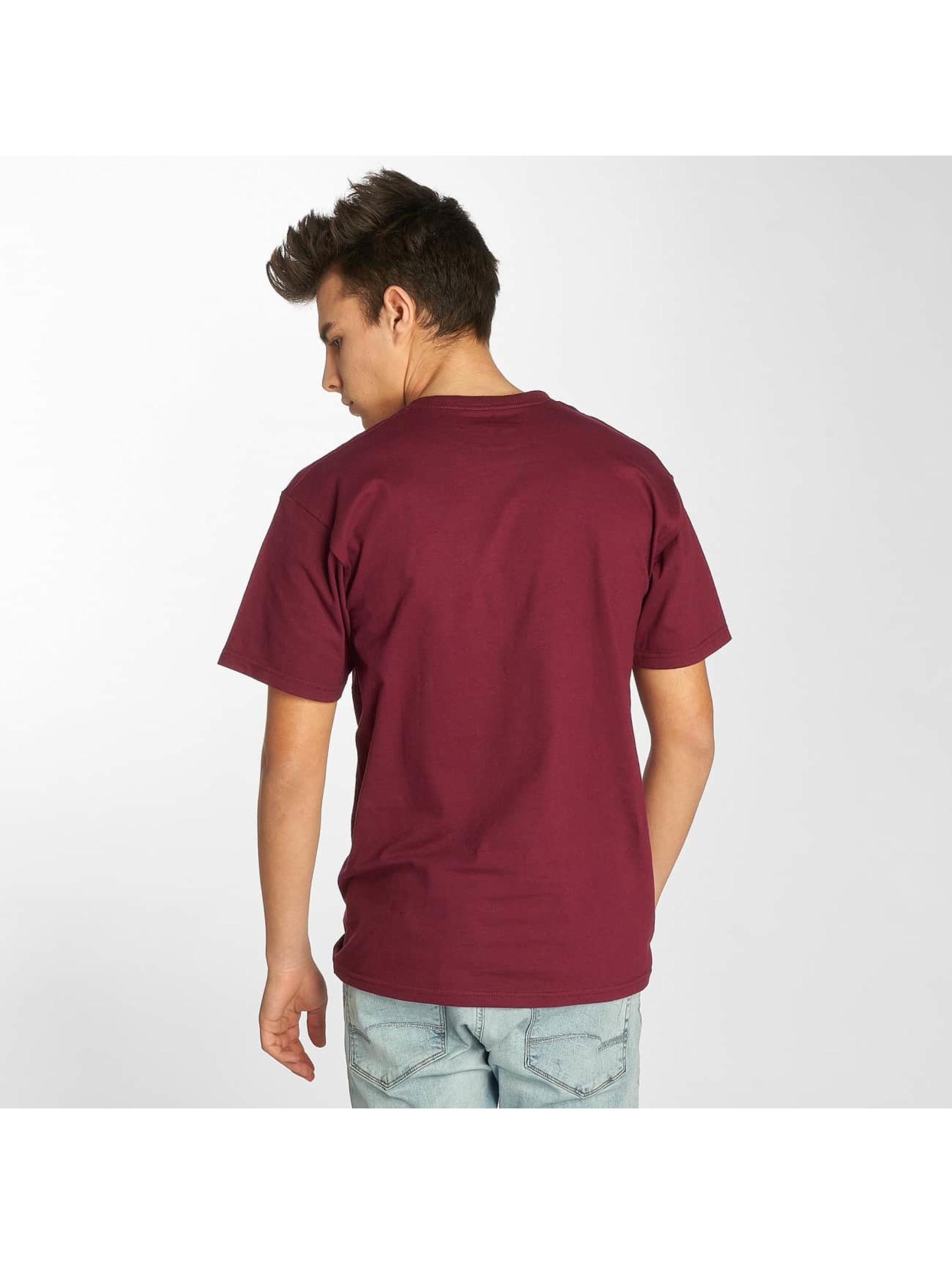 Etnies t-shirt New Box rood