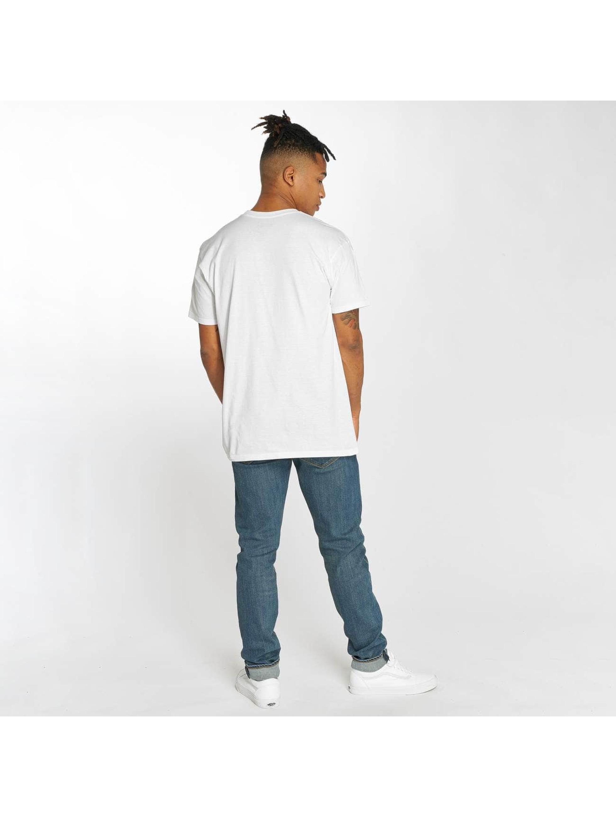 Etnies T-skjorter New Box hvit