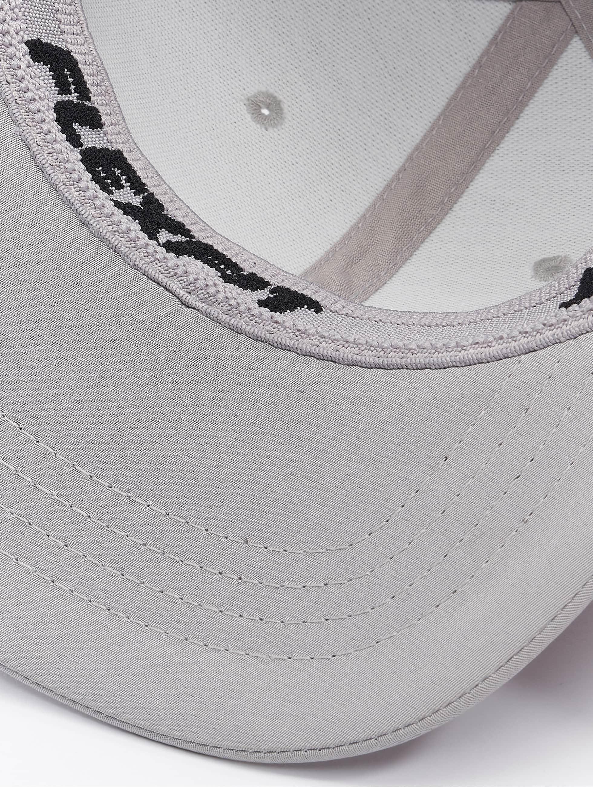 Flexfit Flexfitted Cap Tech silver