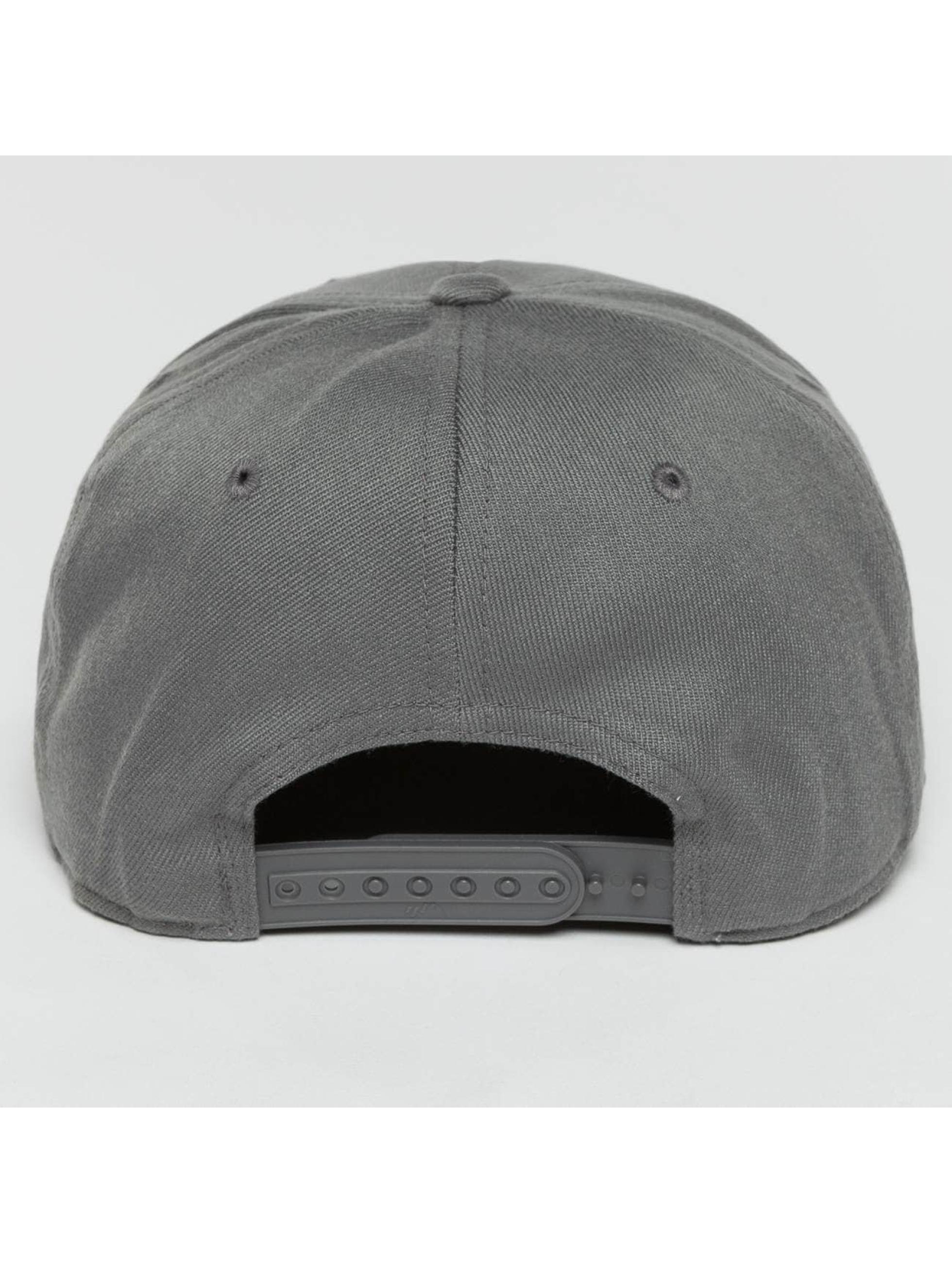 Flexfit Gorra Snapback 110 gris