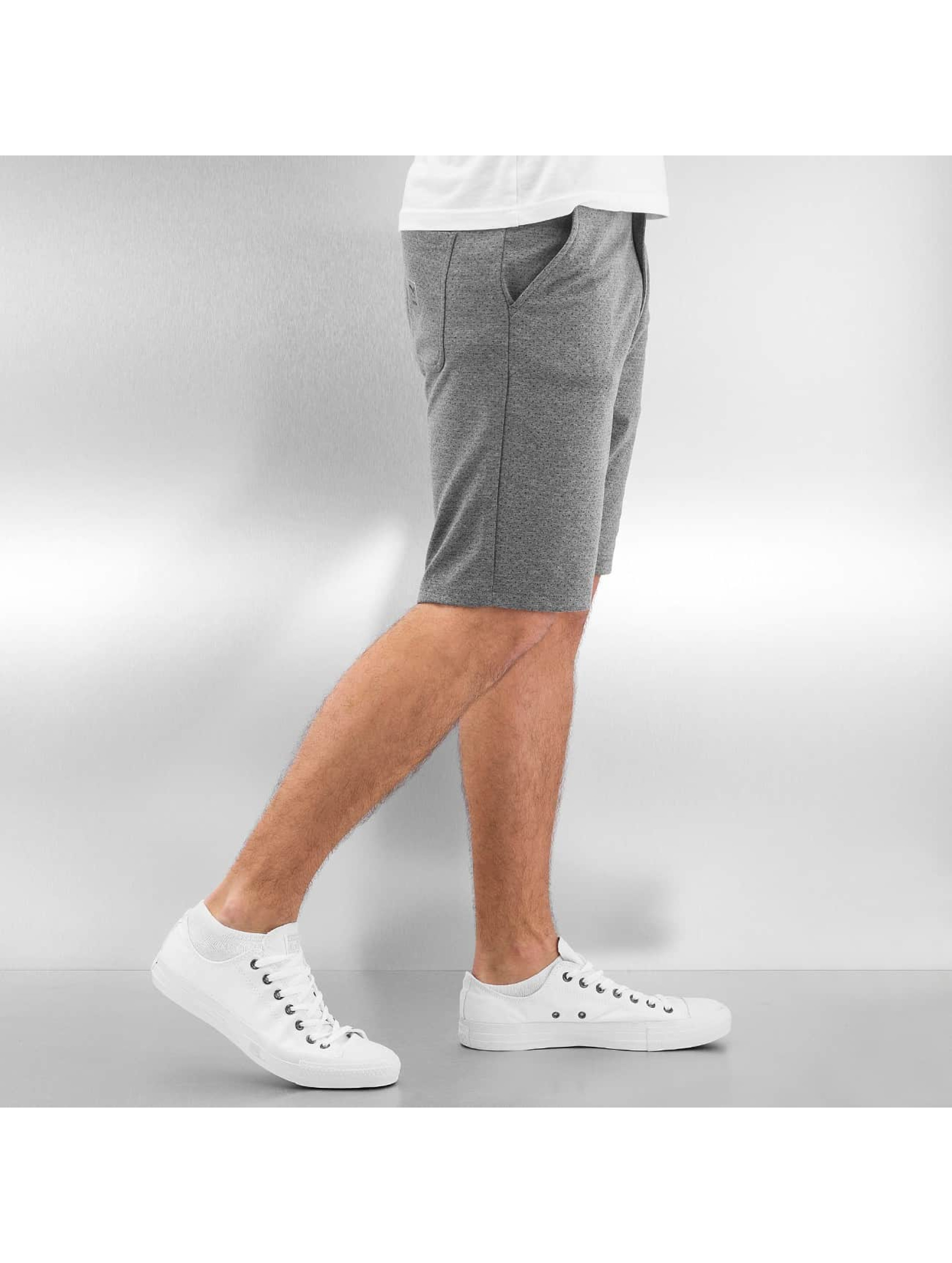 Iriedaily Shorts Pindot grau