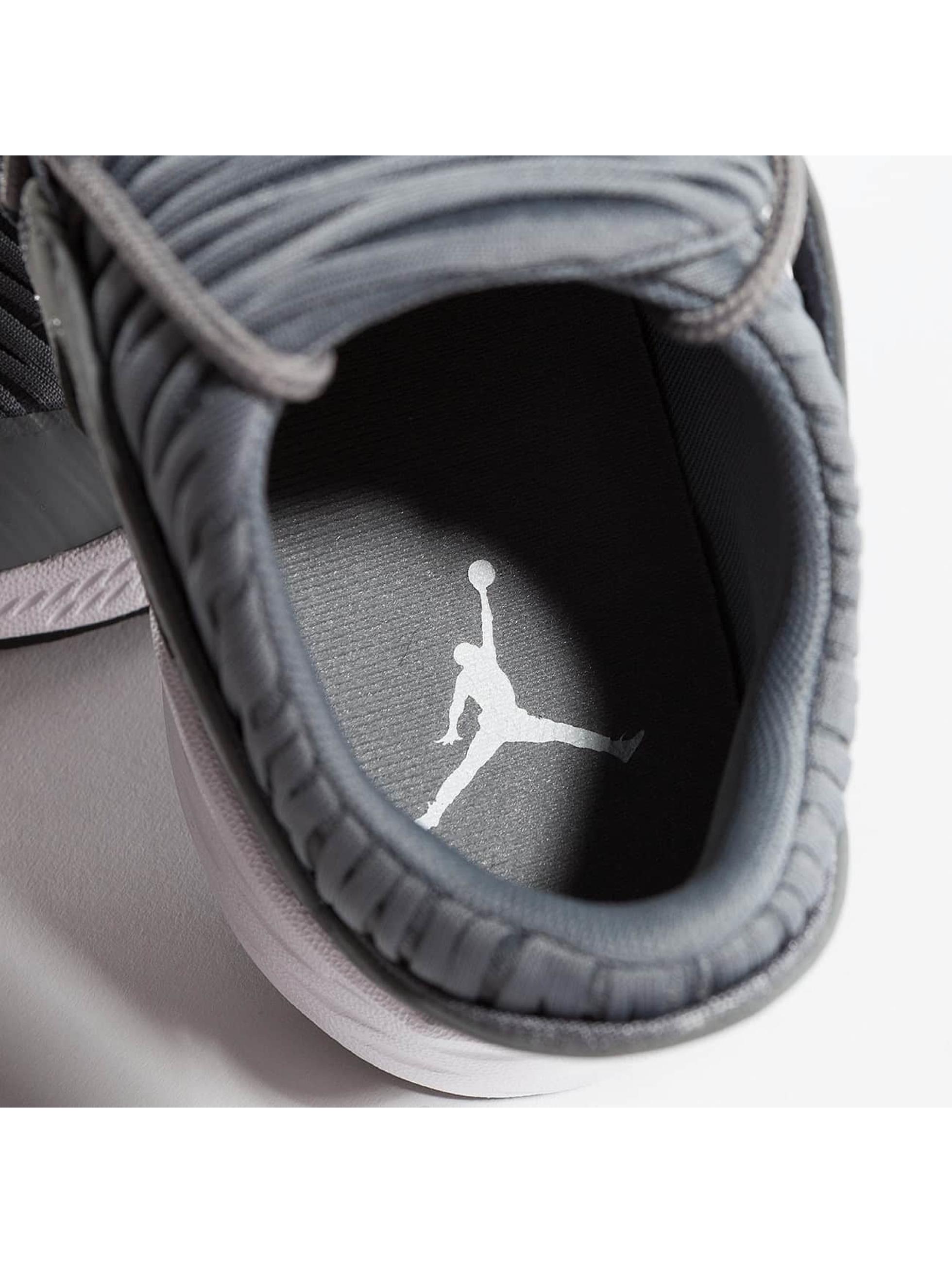 Jordan Sneakers Formula 23 Low šedá