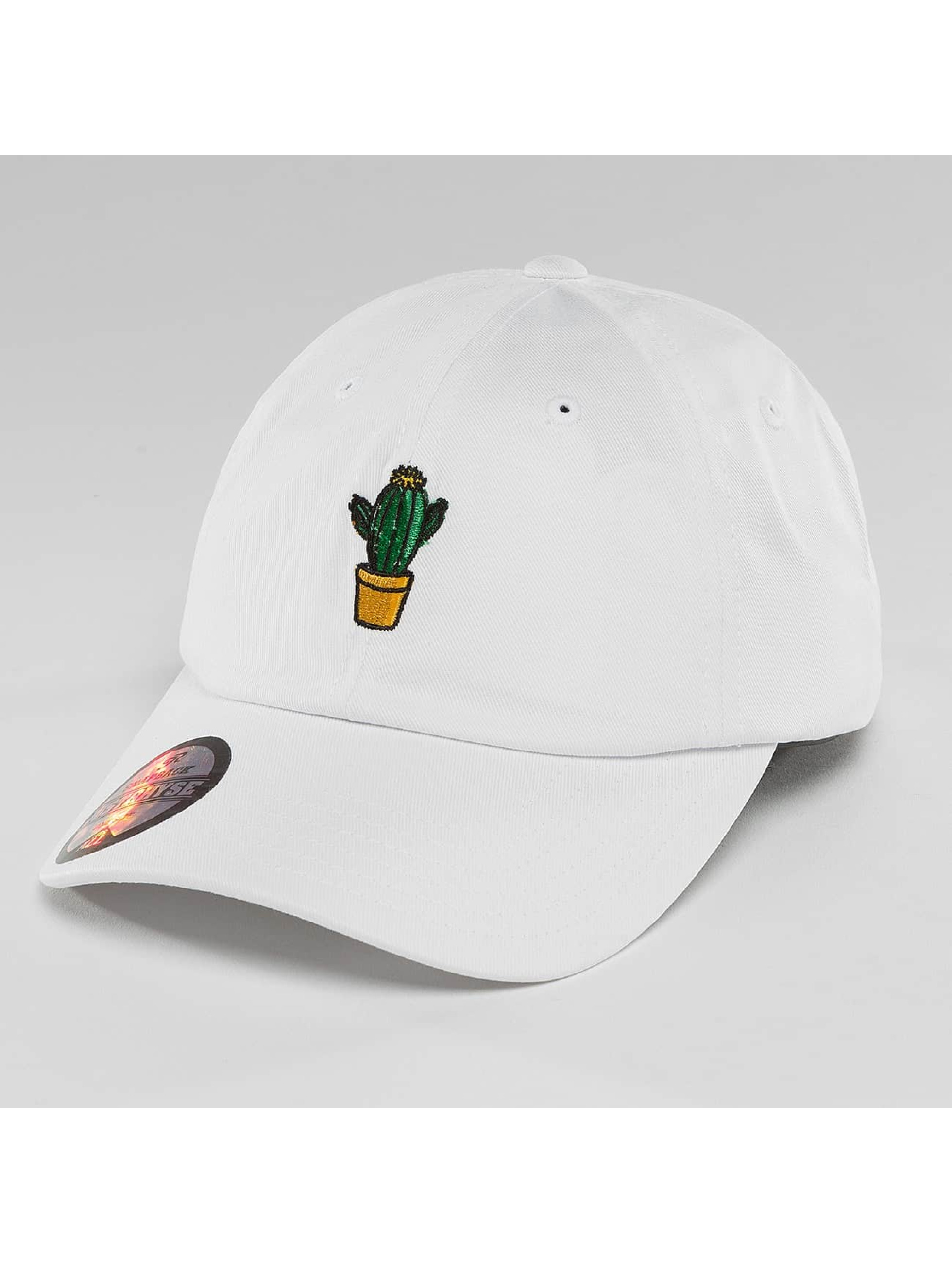 Just Rhyse Cactus blanc Casquette Fitted