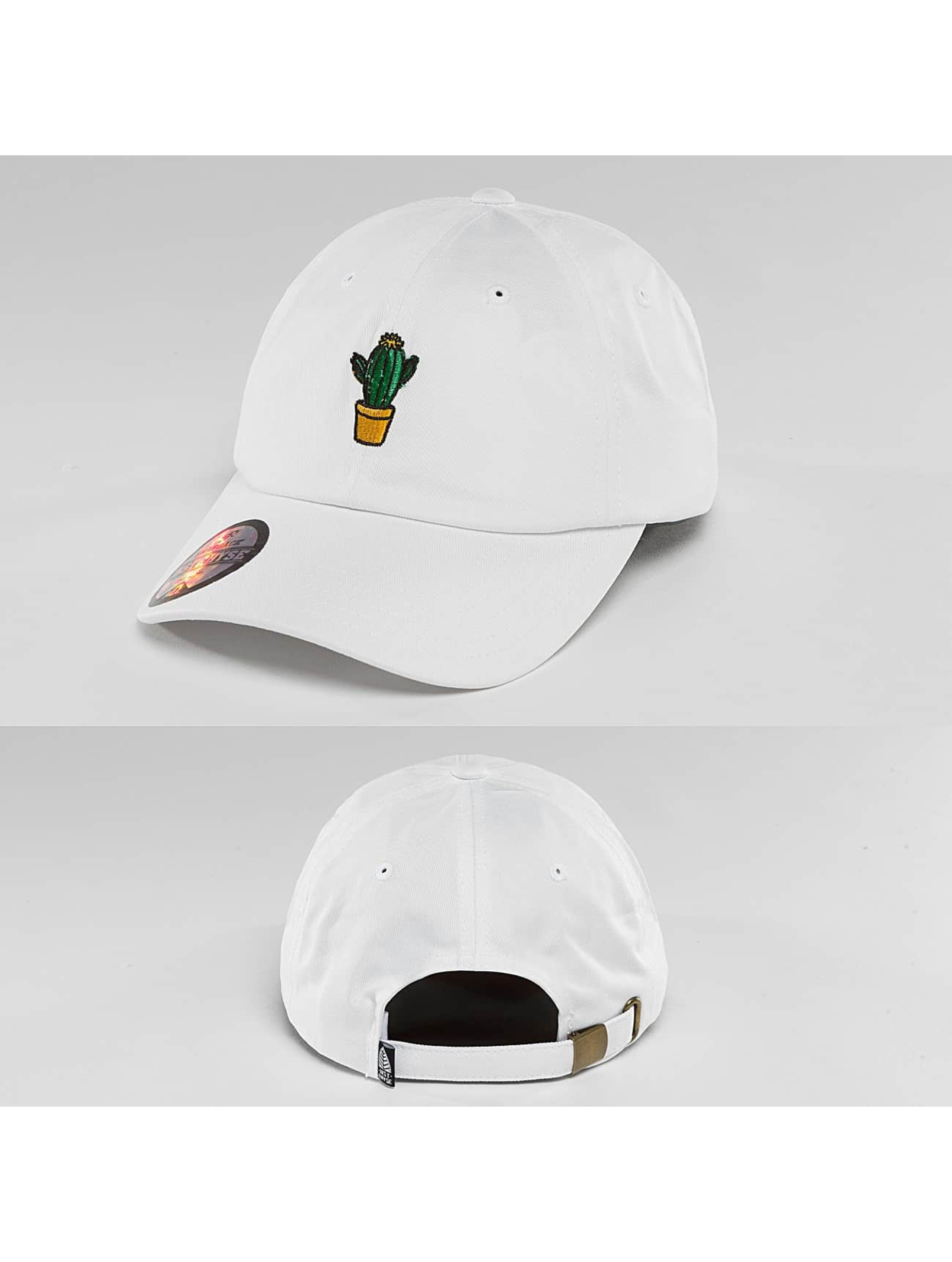 Just Rhyse fitted cap Cactus - wit