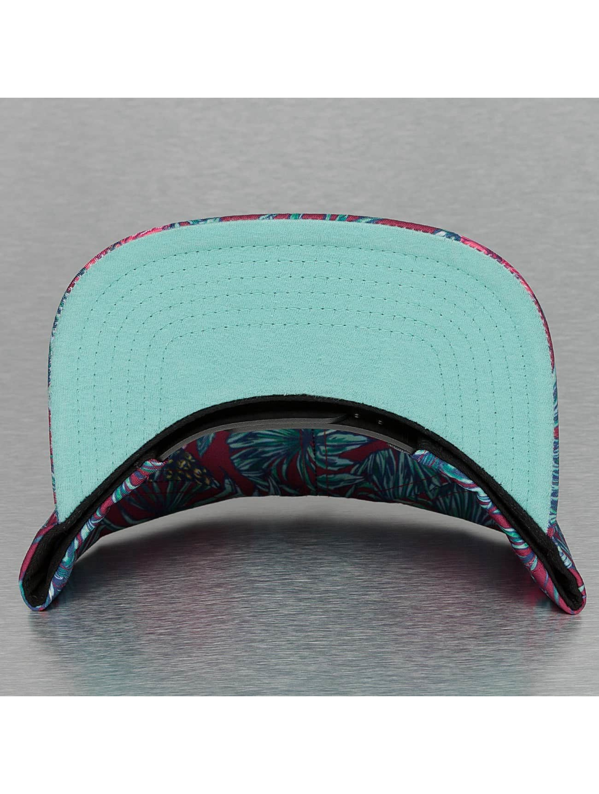 Just Rhyse Snapback Cap Aloha colored