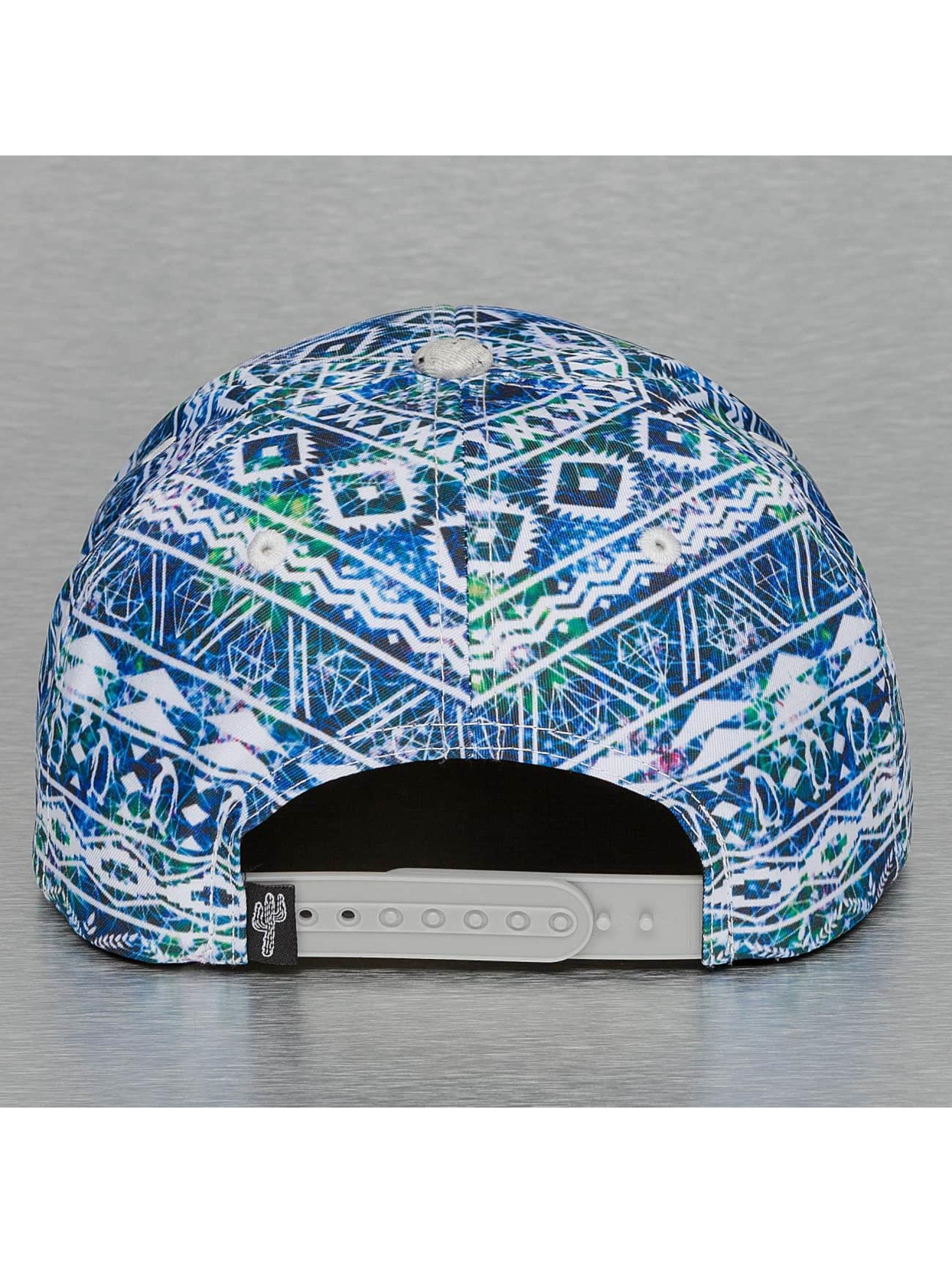 Just Rhyse Snapback Caps Alaska kirjava