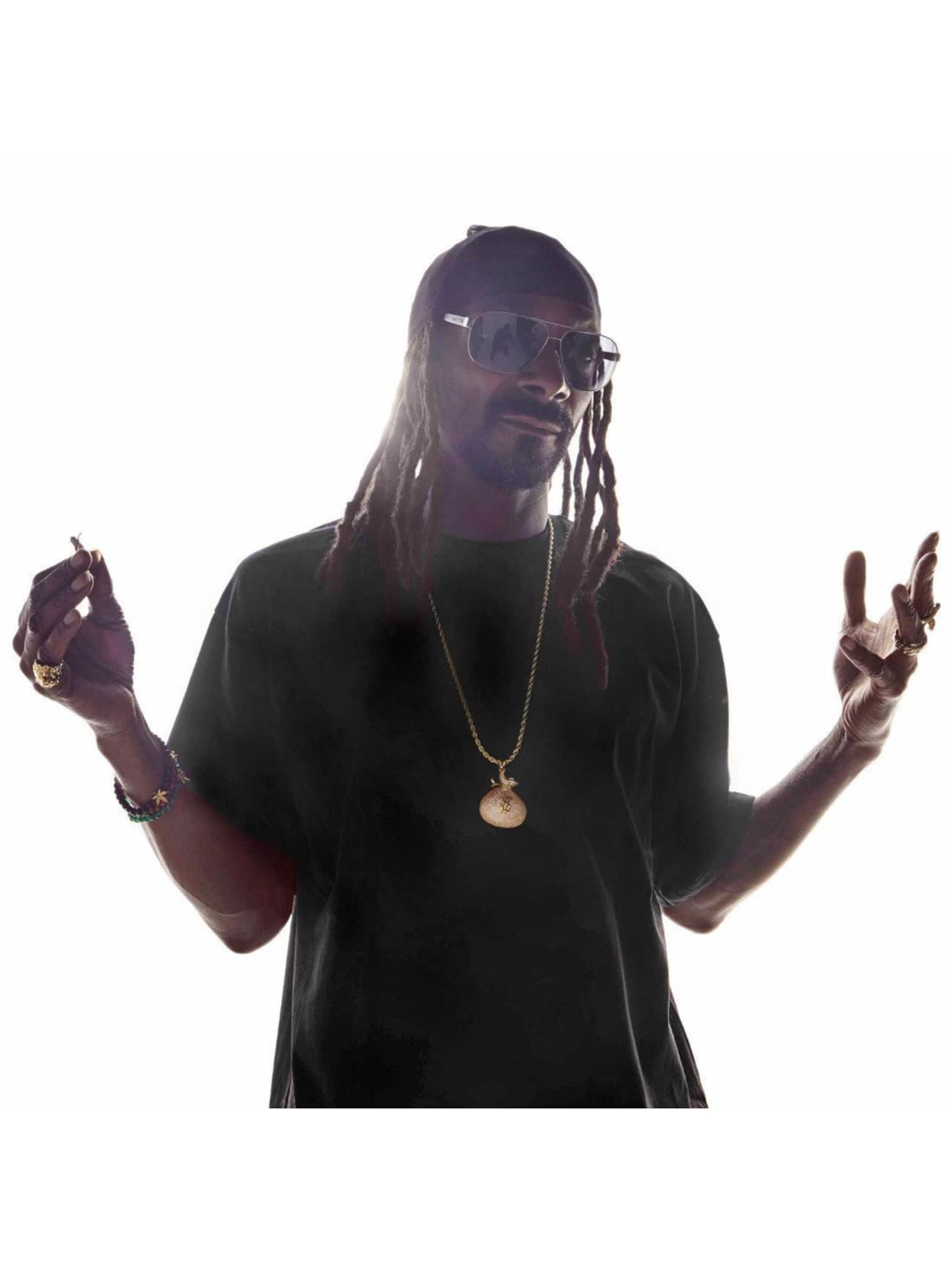 "KING ICE Collana ""Stash"" Iced-Out Money Bag oro"