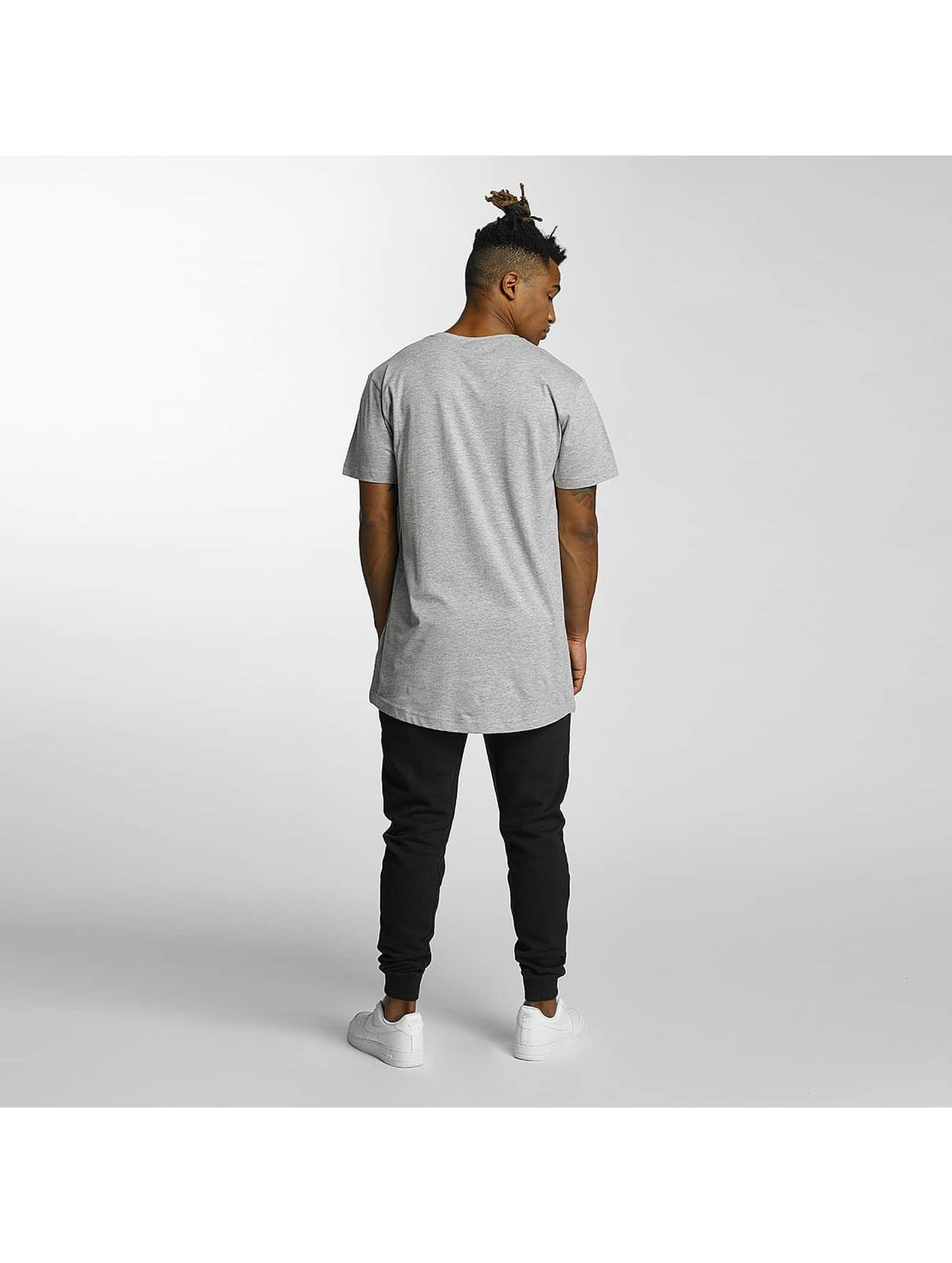 Kingin T-Shirt Isis gray