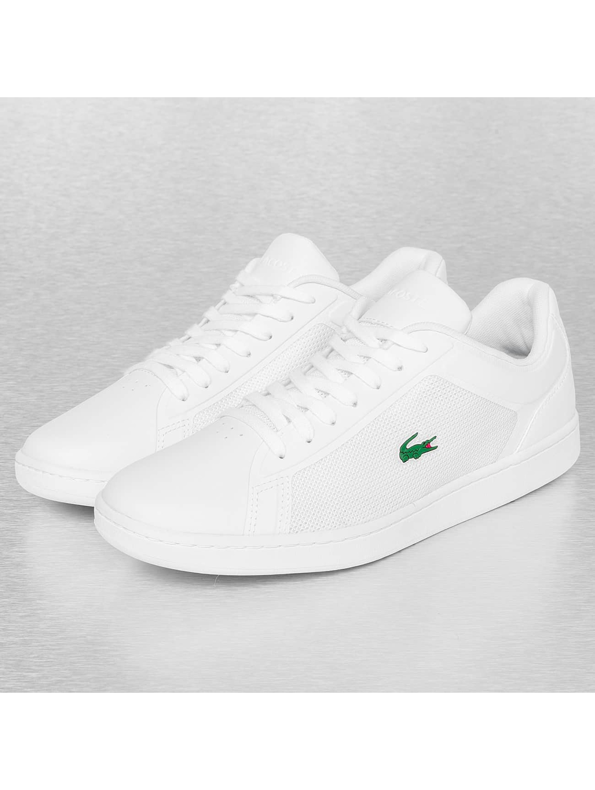 Lacoste Sneakers Blanche