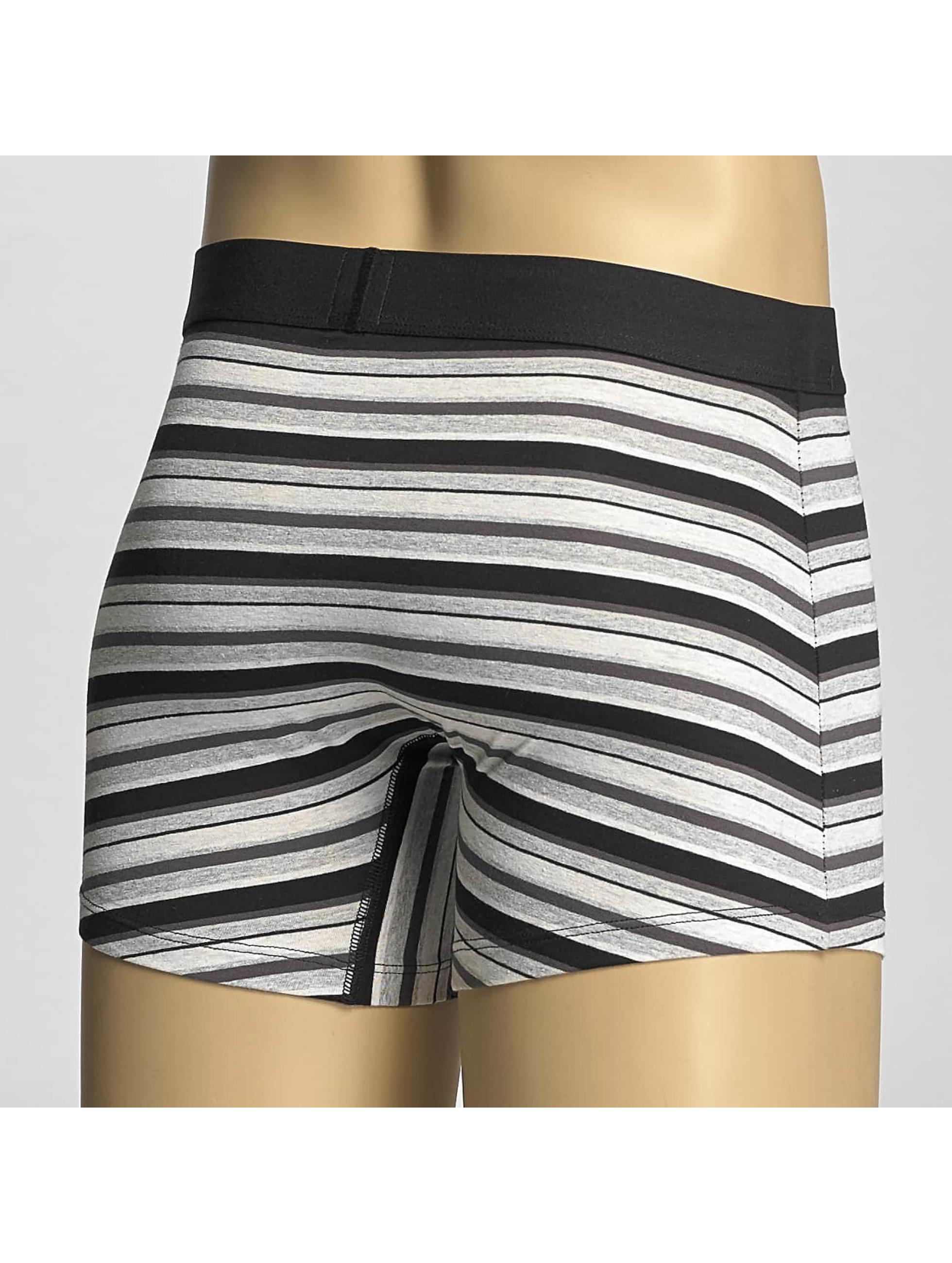 Levi's® Boxershorts Multi Color Stripe grau