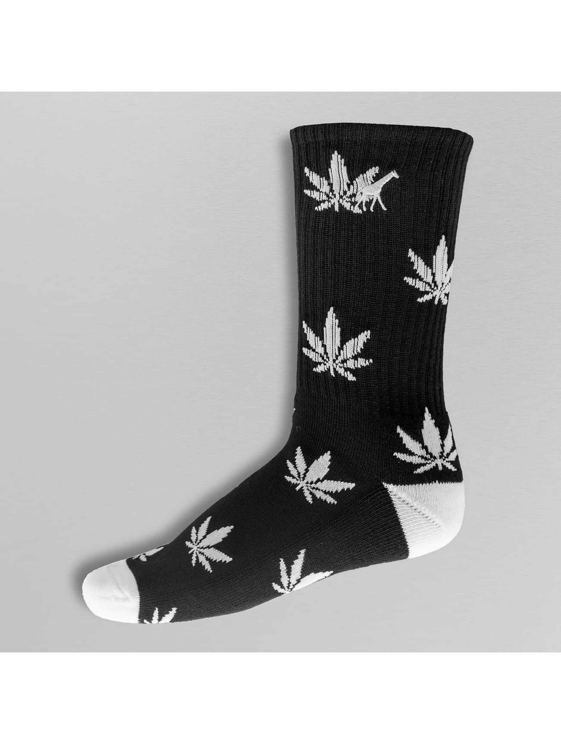 LRG Scarve Stay Lifted 3-Pack black