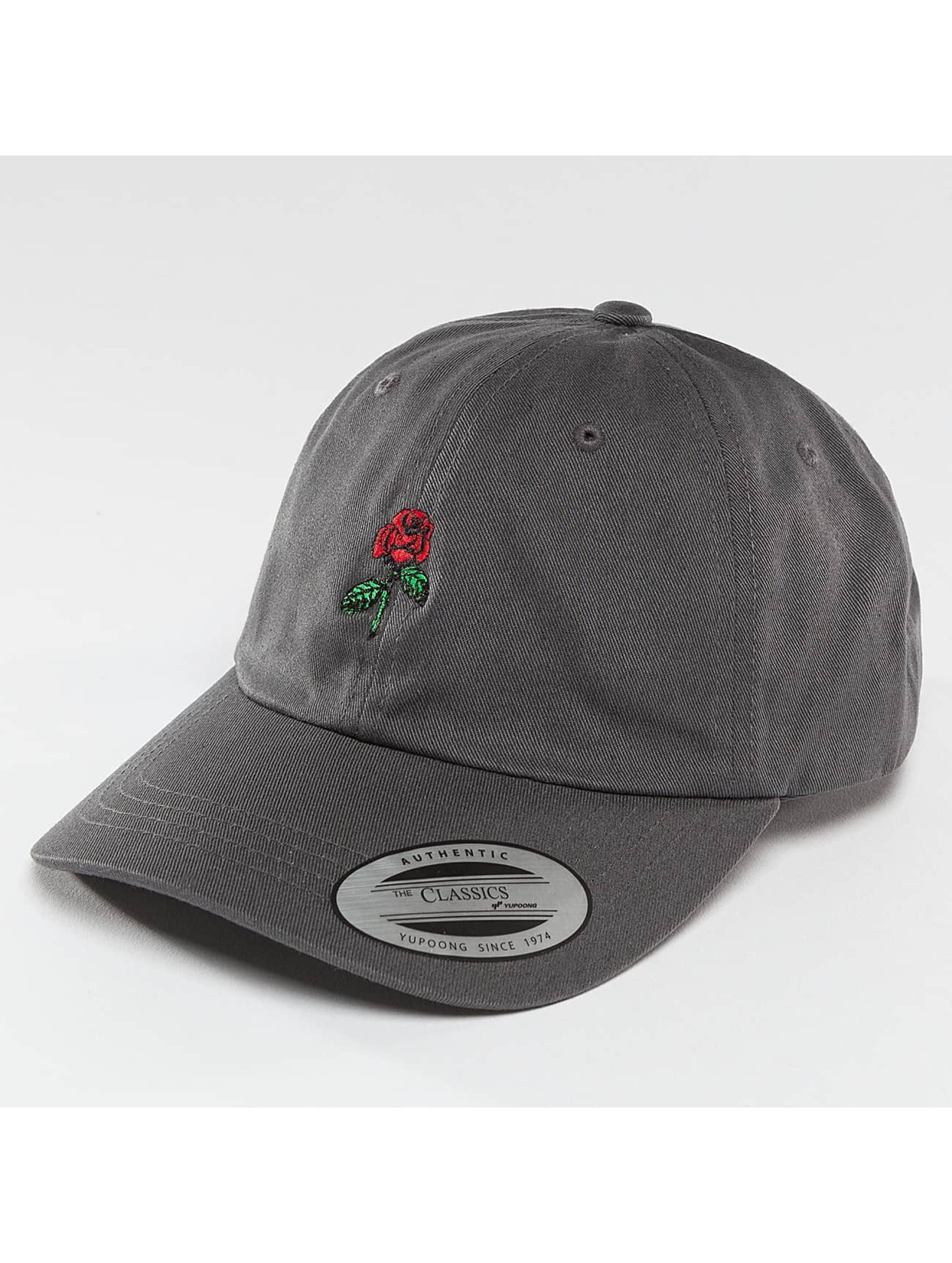 Mister Tee Snapback Cap Rose Dad gray