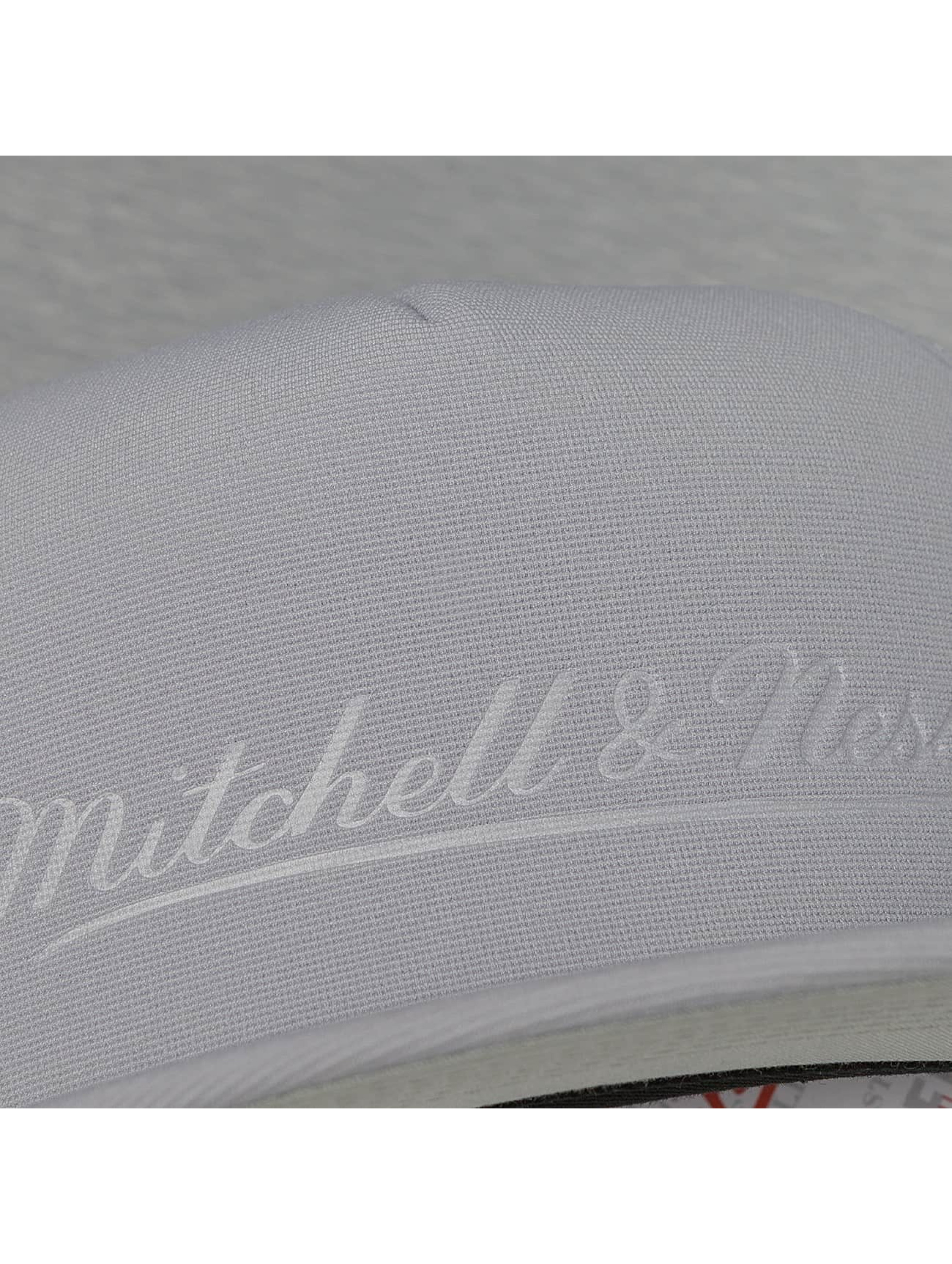 Mitchell & Ness Casquette Trucker mesh Tonal D Trucker gris