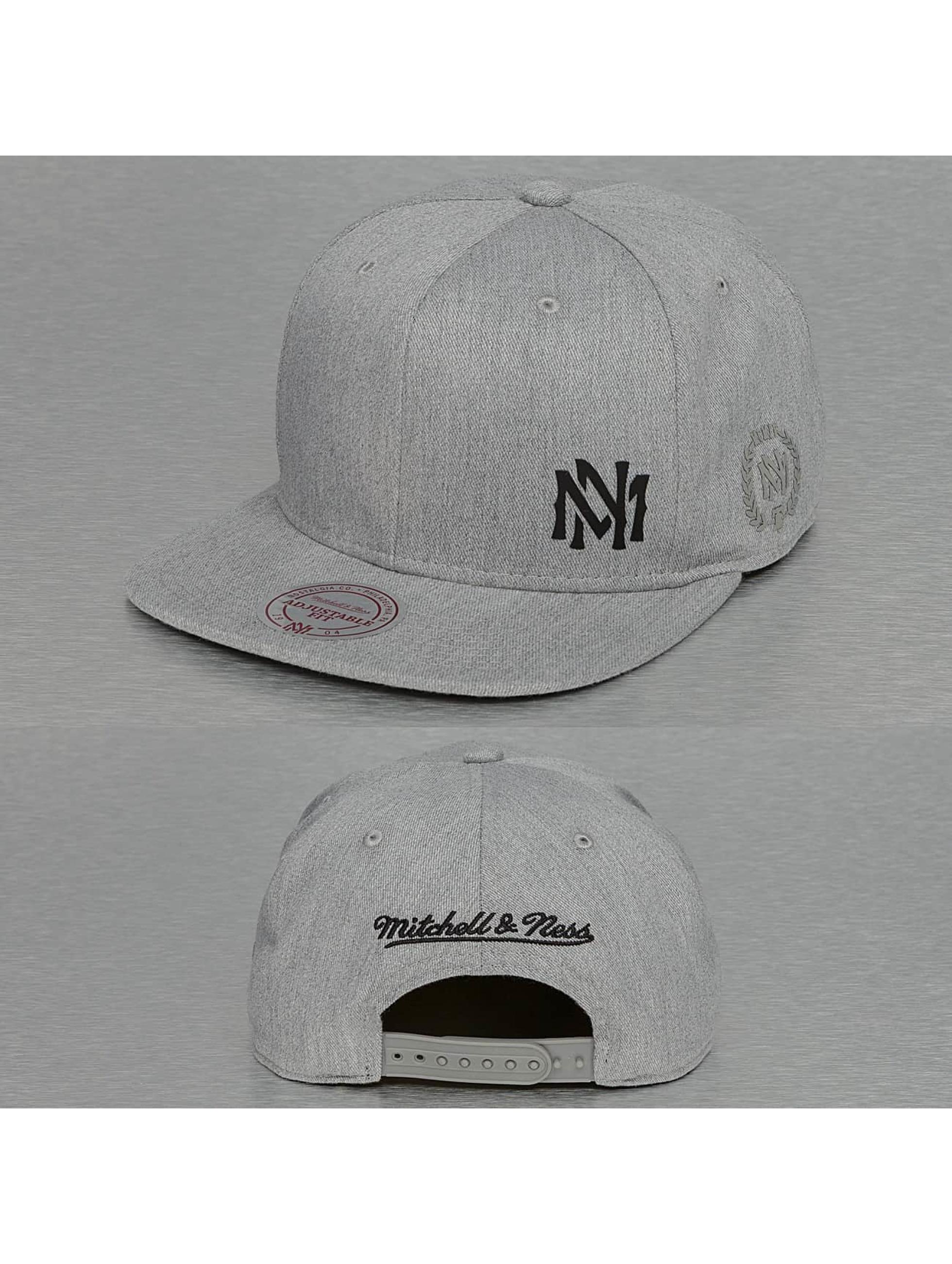 Mitchell & Ness Snapbackkeps Absolut grå