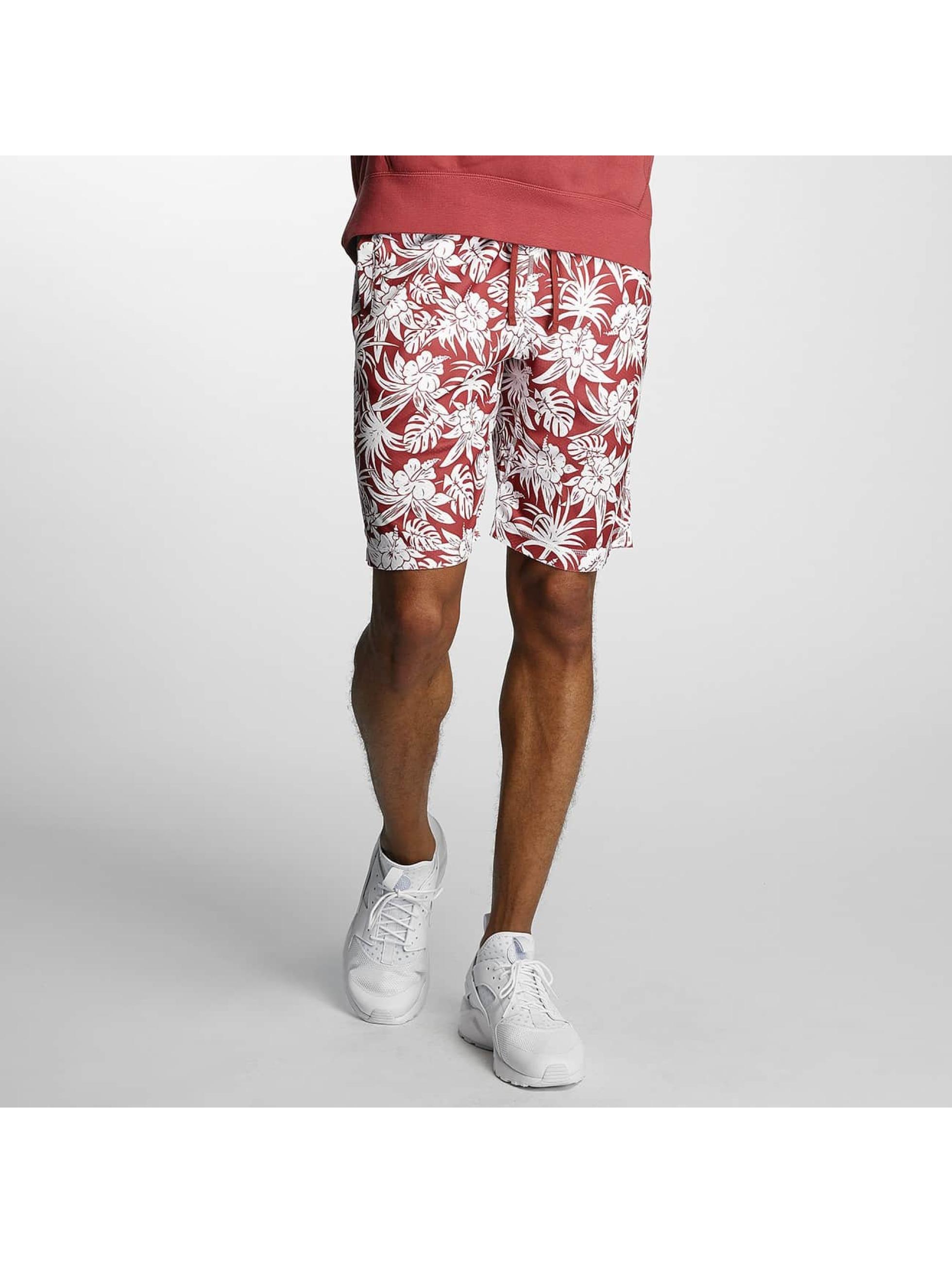 Nike SB Short SB Dry red