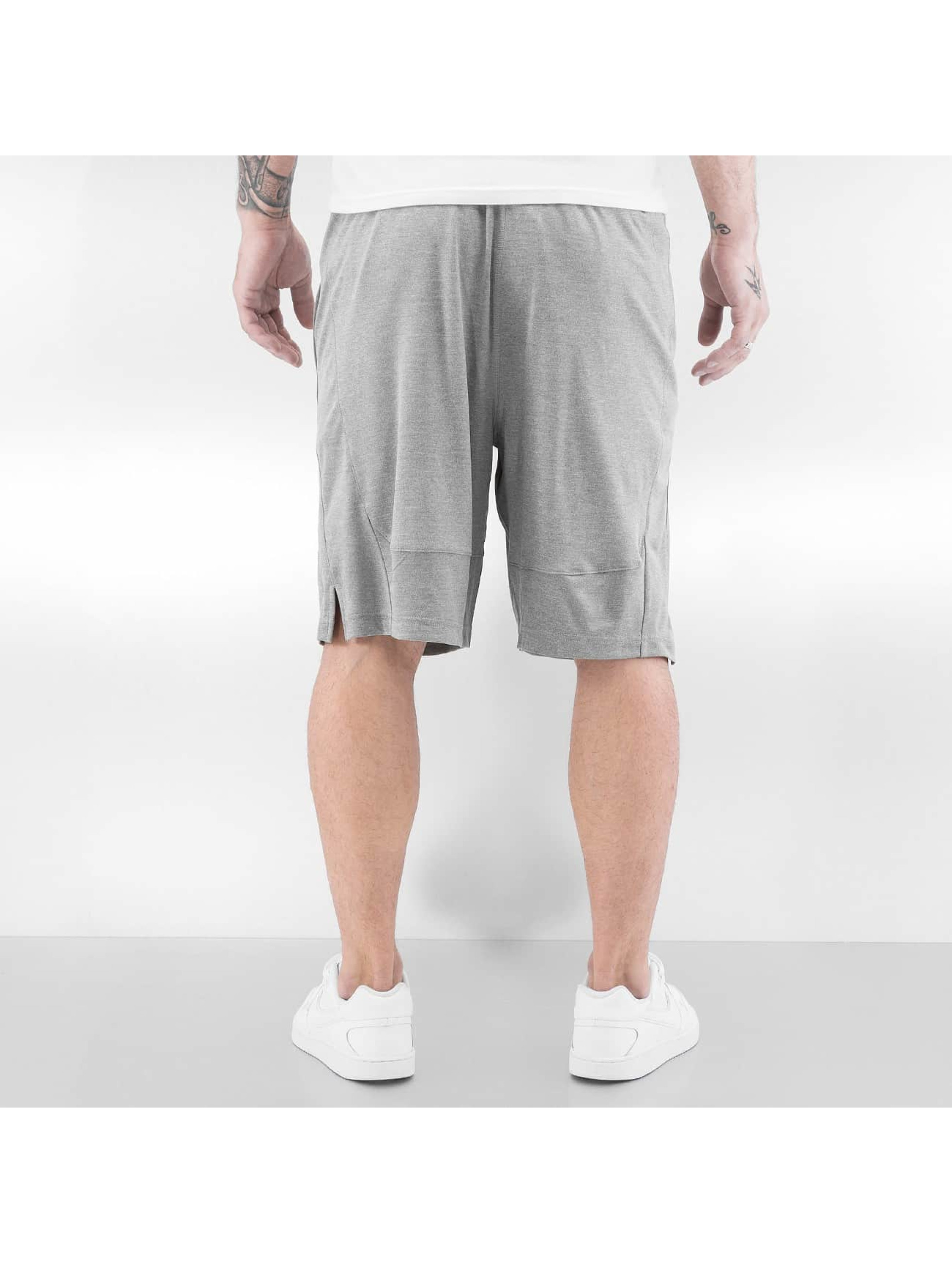 """Nike Short Fly 9"""" gris"""