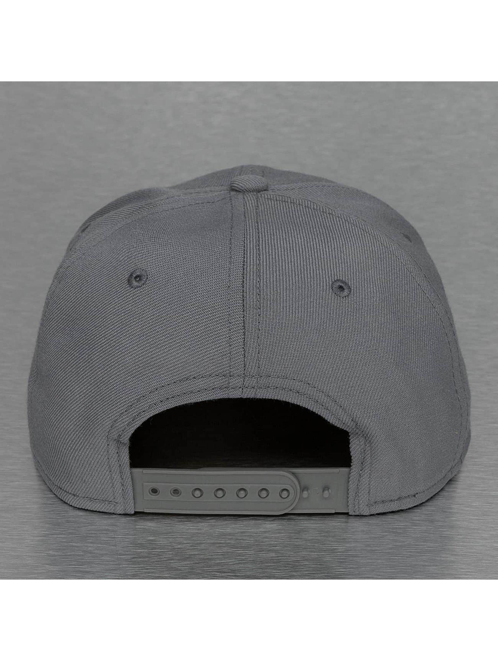 Nike Snapback Cap Future True grau