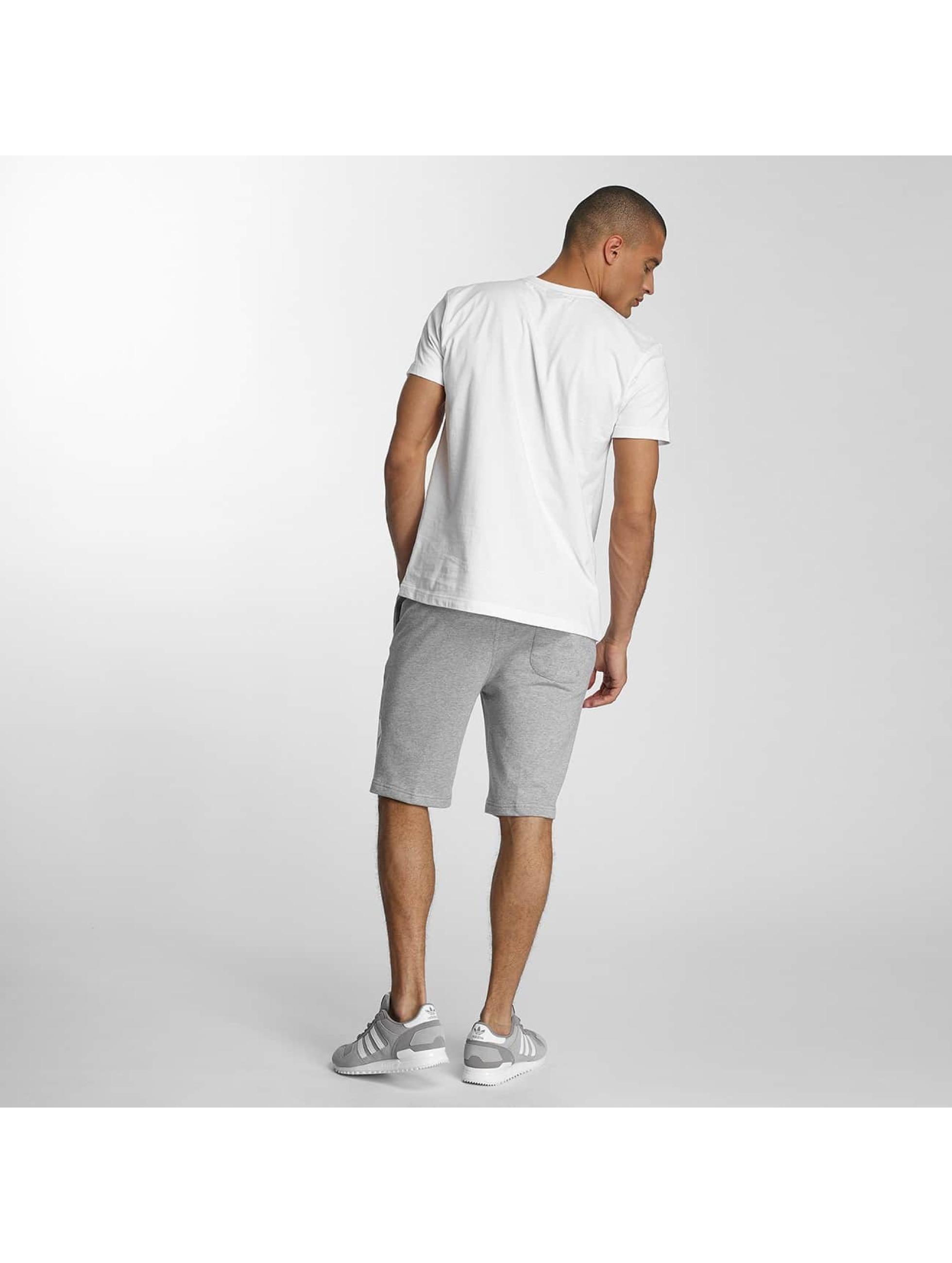 Pusher Apparel Pantalón cortos 219 Cut gris