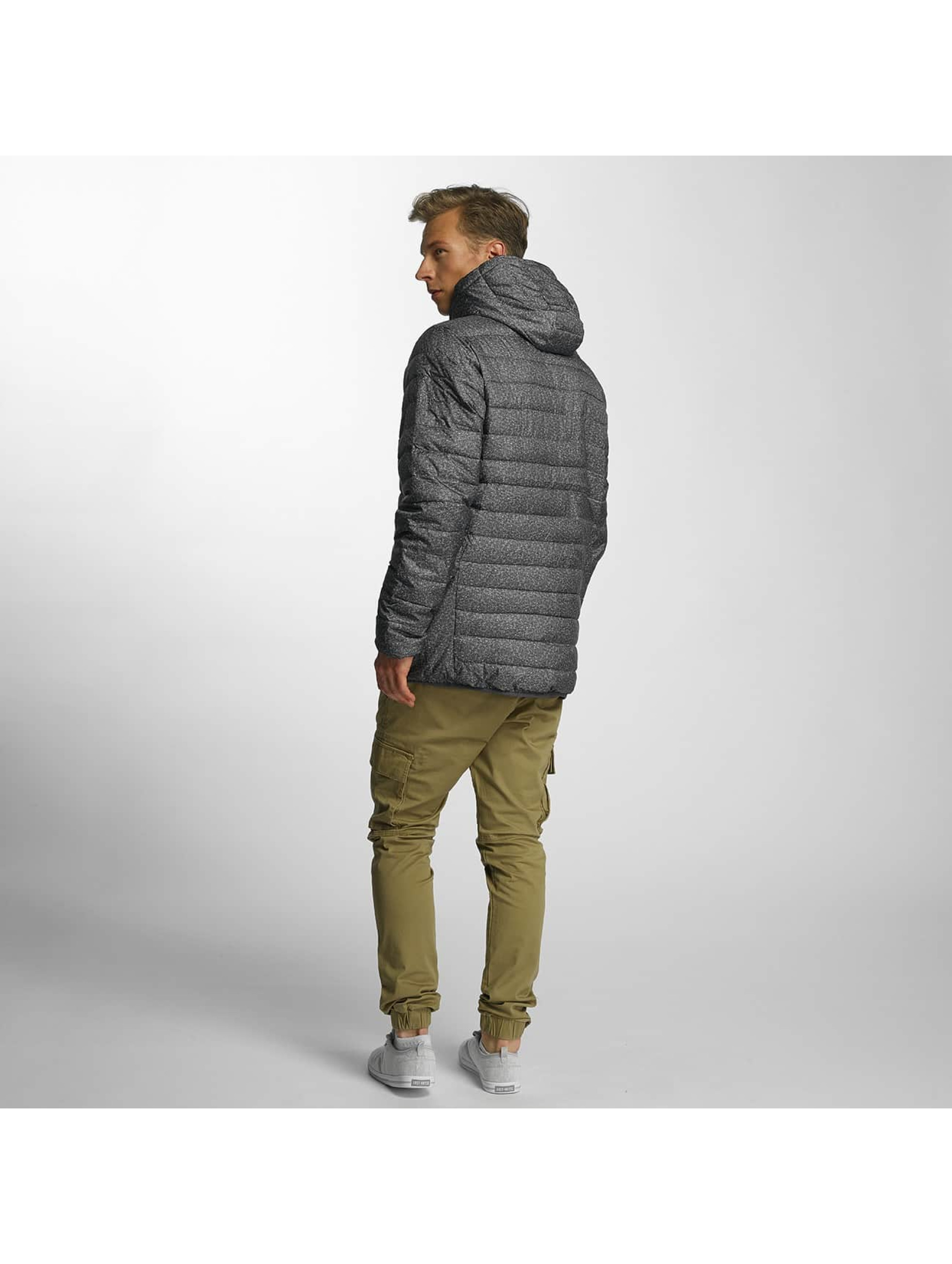 Quiksilver Зимняя куртка Everyday Scaly серый