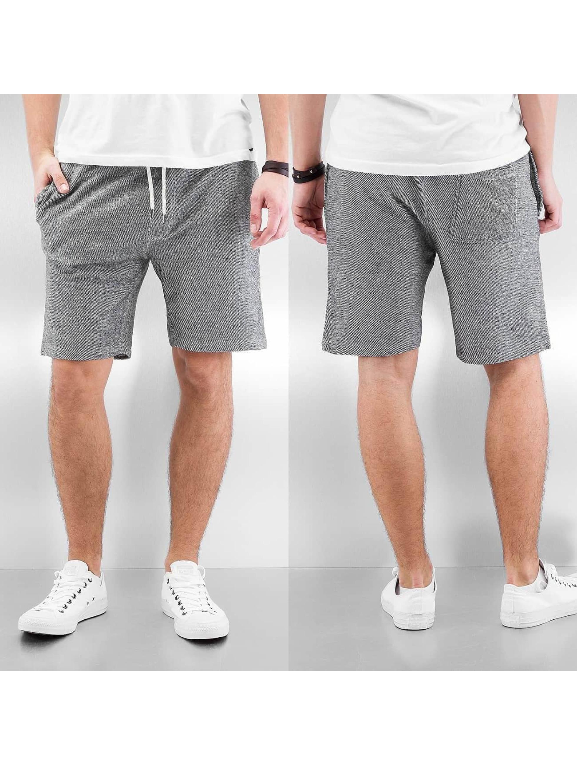 Reell Jeans Shorts Sweat Shorts grau