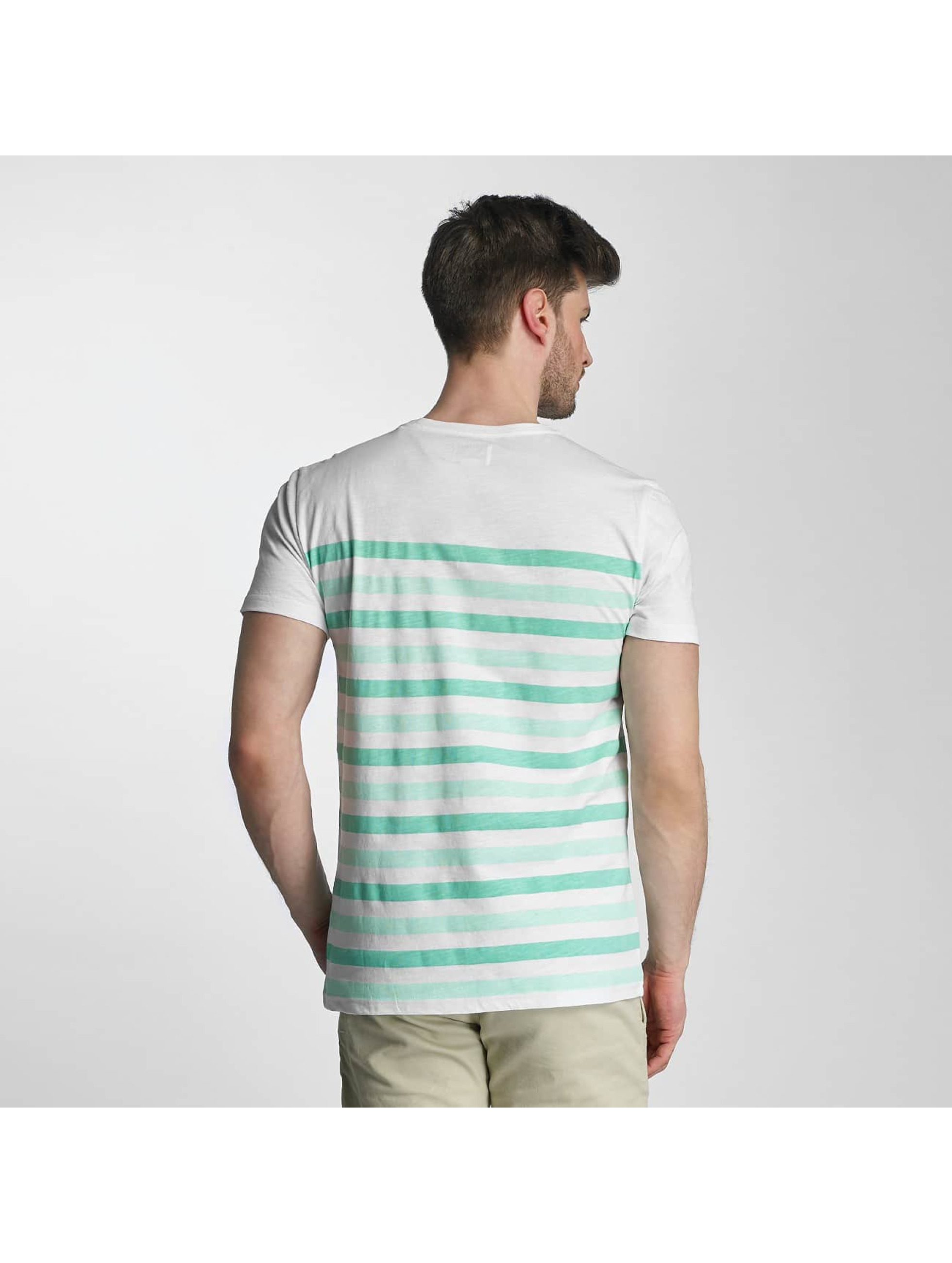 SHINE Original t-shirt Striped groen