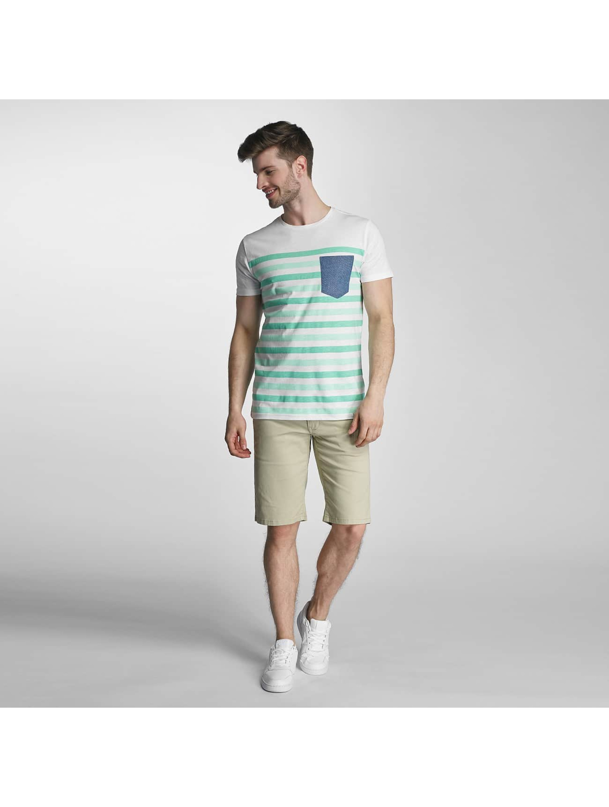 SHINE Original T-shirts Striped grøn
