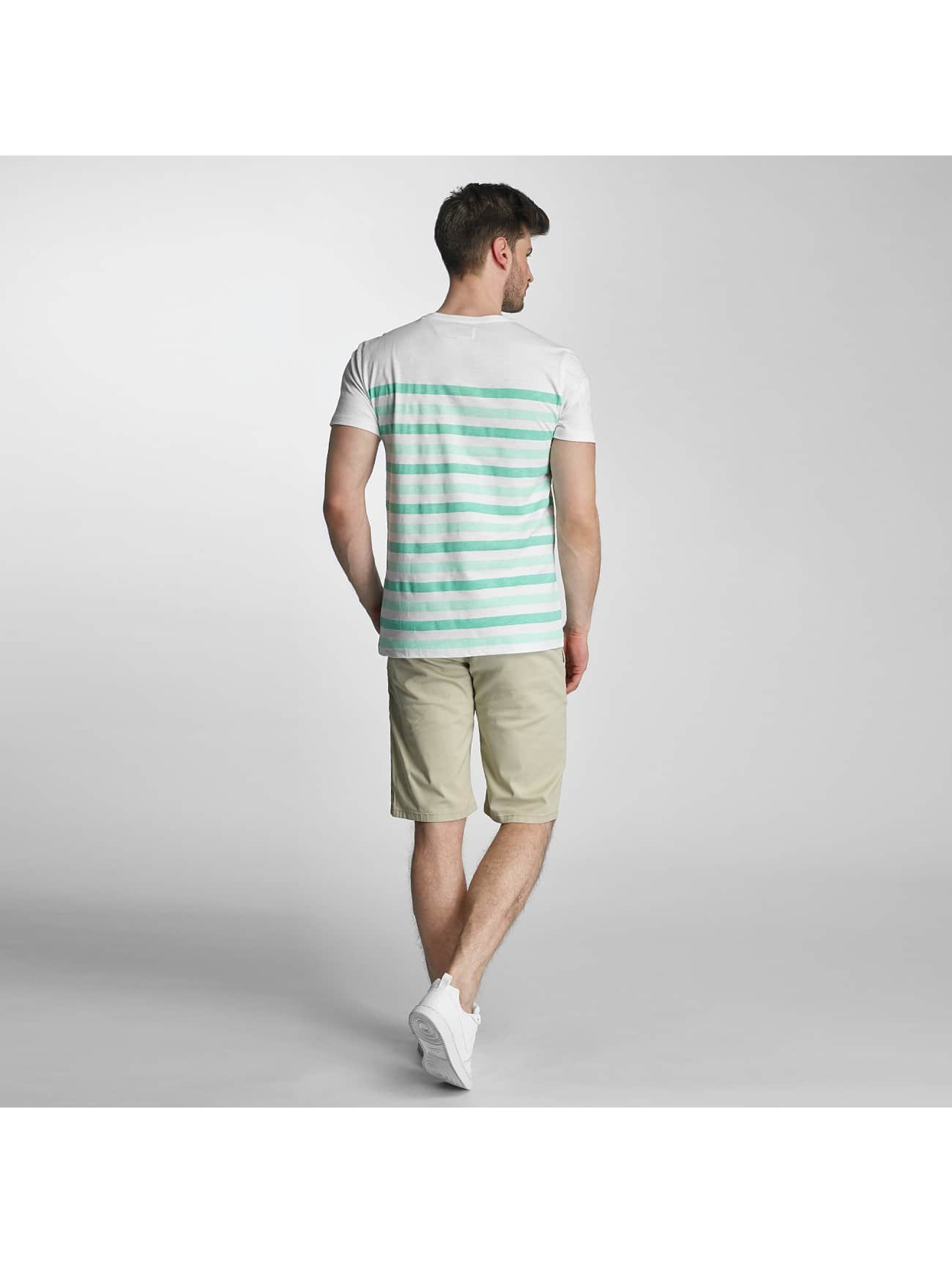 SHINE Original T-shirts Striped grøn