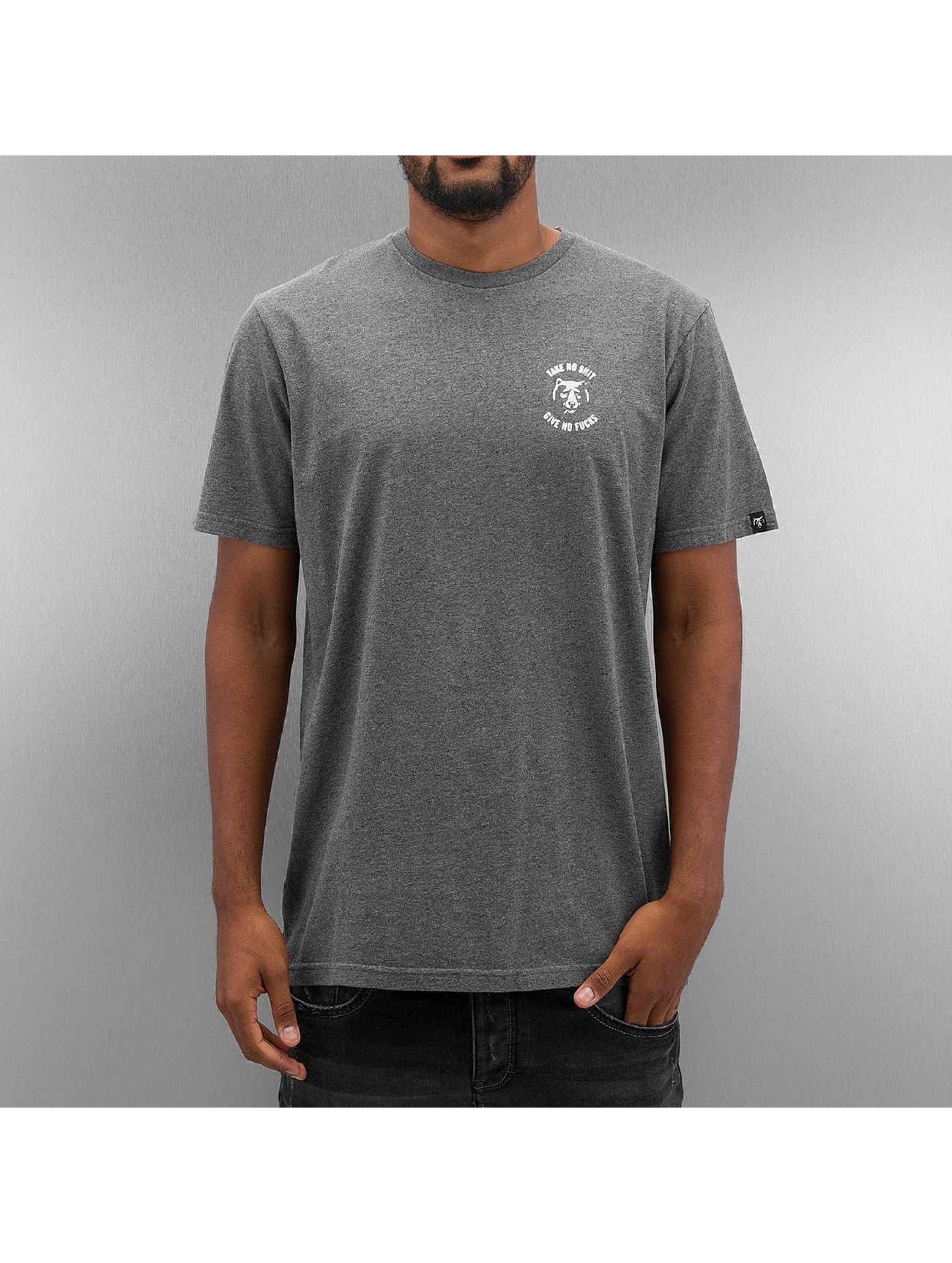 The Dudes T-Shirt SNGAF grau