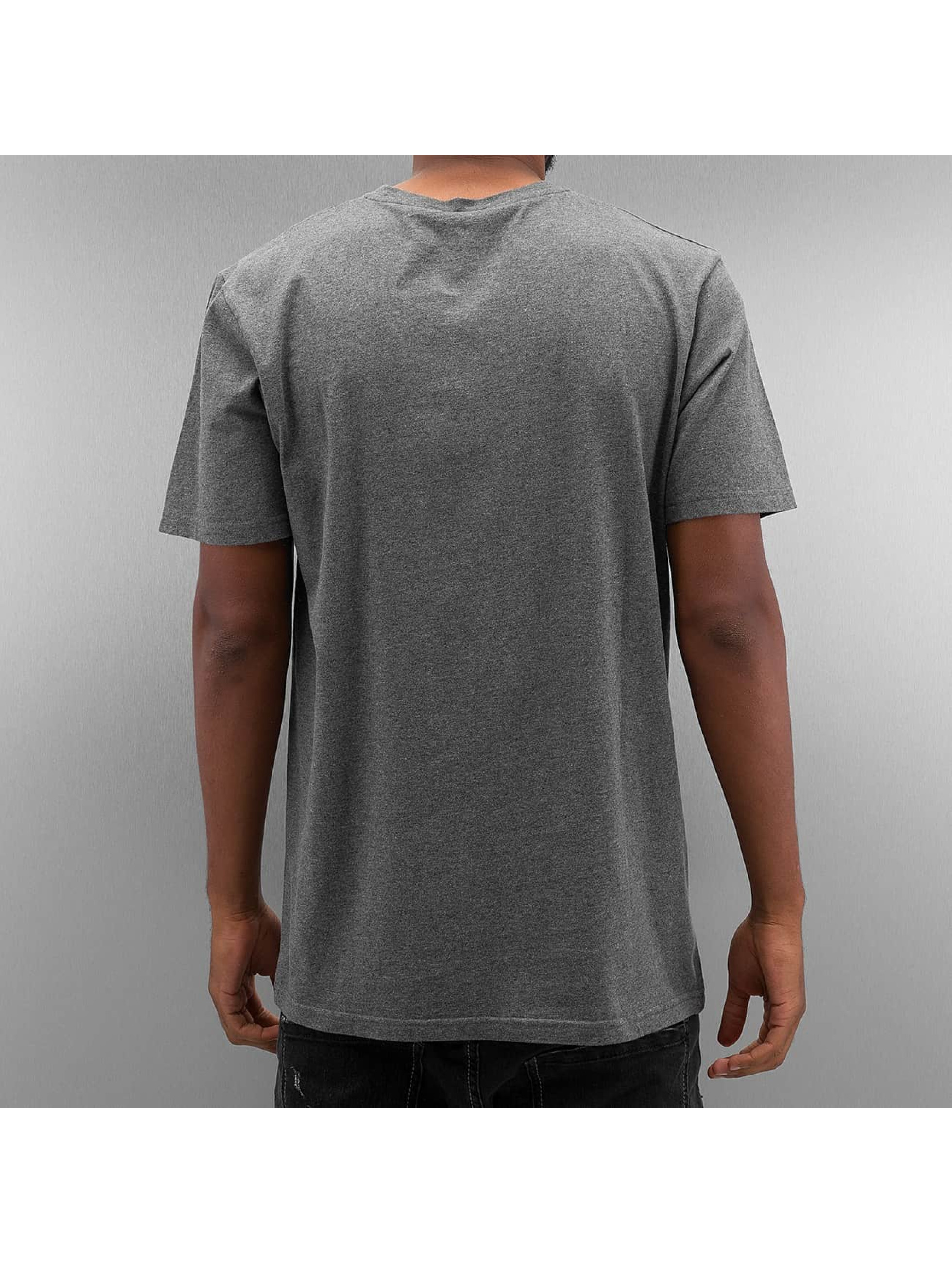 The Dudes t-shirt Duck grijs