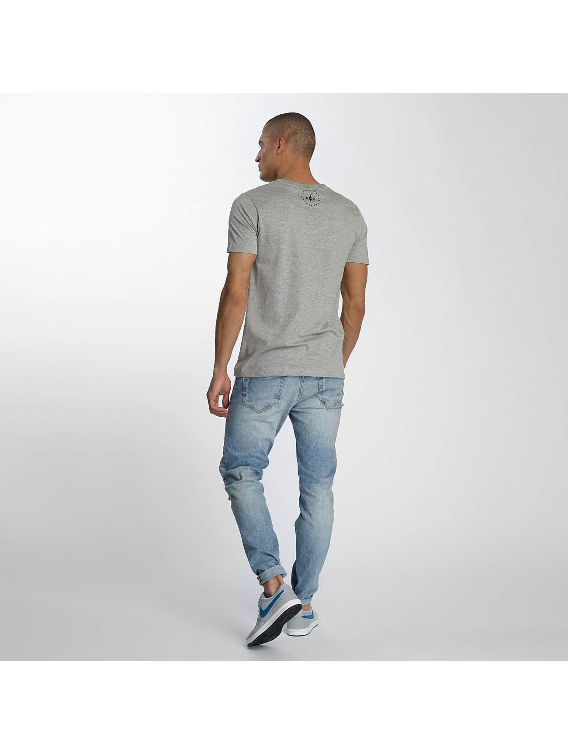 TrueSpin T-shirts 1 grå