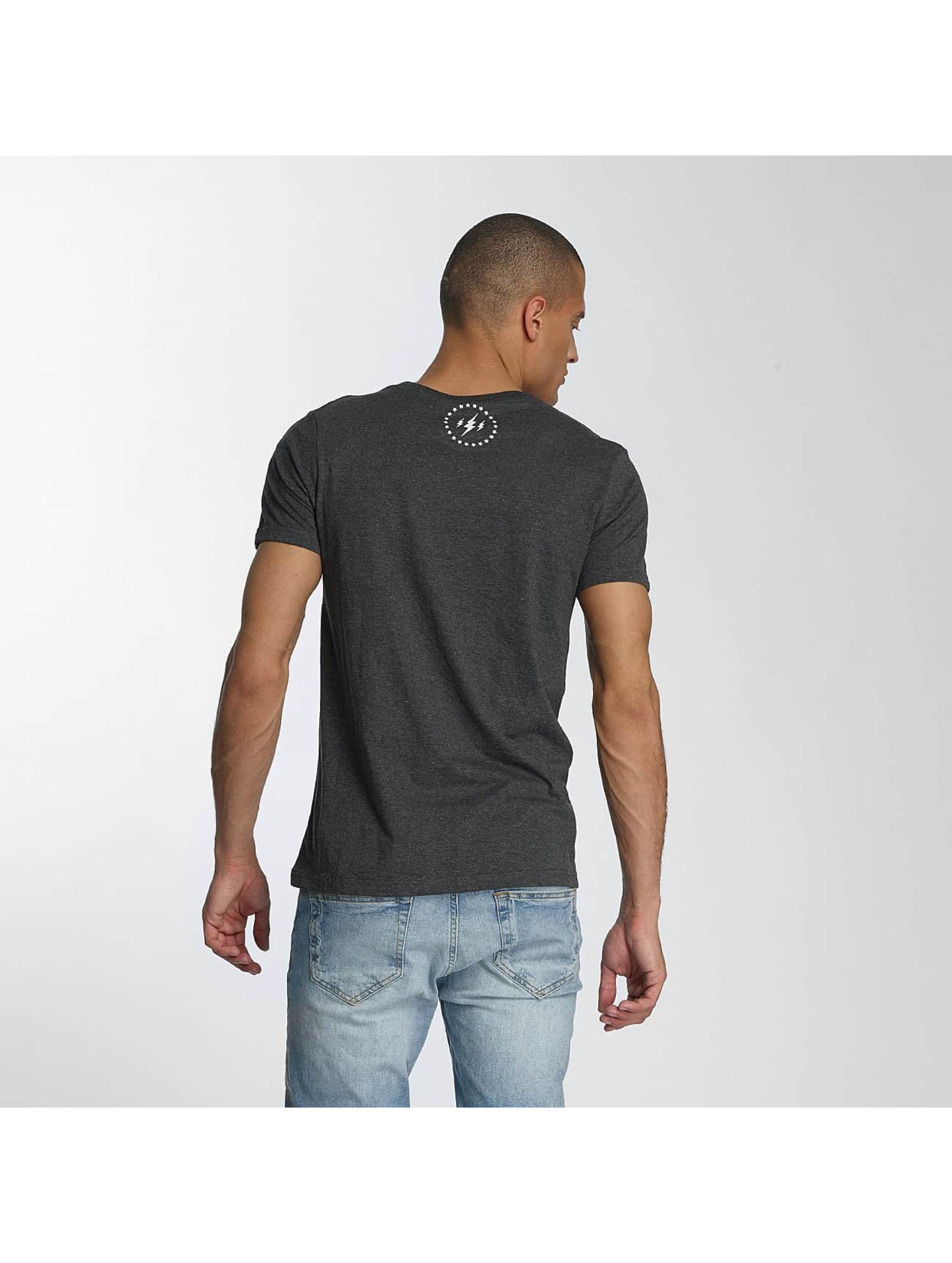 TrueSpin T-shirts 5 grå
