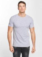 Aarhon T-Shirt Destroyed gris