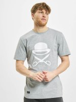 Cayler & Sons t-shirt PA Icon grijs