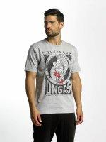Dangerous DNGRS T-Shirt Boxing grau