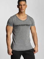 Devilsfruit T-Shirt Basic gris
