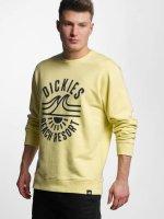 Dickies Sweat & Pull Marion jaune