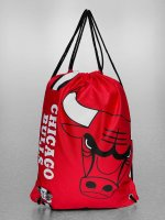 Forever Collectibles Shopper NBA Cropped Logo Chicago Bulls rood