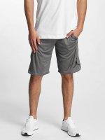 Jordan shorts 23 Tech Dry grijs