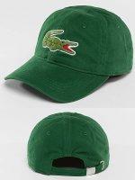 Lacoste Snapback Caps Logo zielony