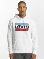 Levi's® Hoody Graphic PO bont