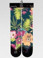 LUF SOX Socks Classics Deep Tropic colored