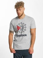 Reebok t-shirt F GR grijs