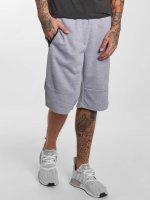 Southpole Shorts Tech Fleece grau