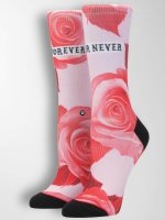 Stance Socken Dedication Tomboy pink