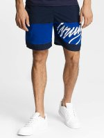 Wrung Division Shorts Alpha blau