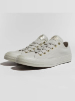 Converse Sneaker Taylor All Star Ox grau