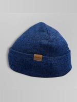 Dickies шляпа Tyner синий